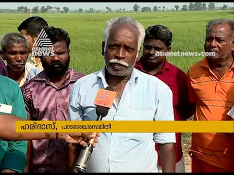 Salty water entered in farms, farmers from Kuttanad are in trouble