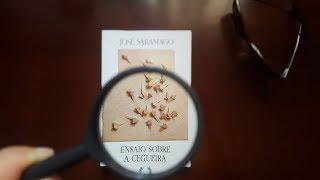 RESENHA ENSAIO SOBRE A CEGUEIRA | JOSÉ SARAMAGO | DÂMARIS OBS