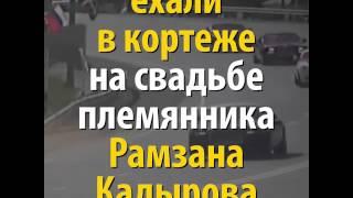 Из видеохроники одной свадьбы в Чечне: гости подъехали вовсе не на велосипеде