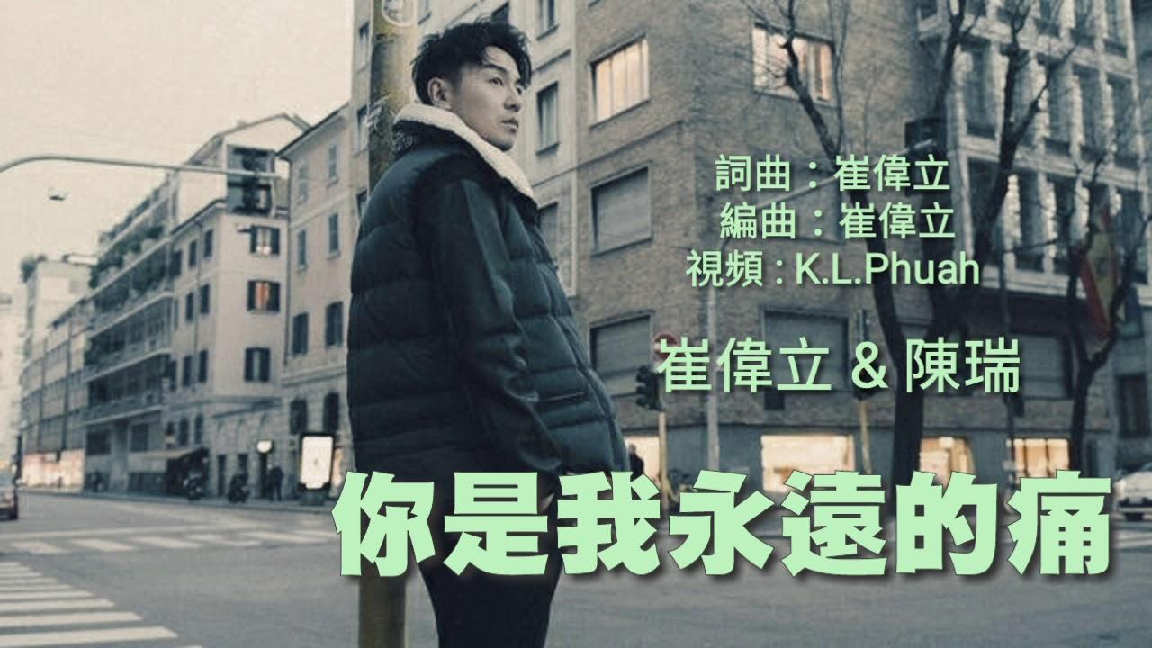 《你是我永远的痛》 演唱 : 陈瑞/崔伟立