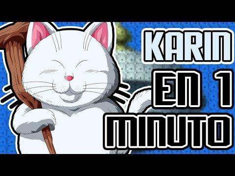 MAESTRO KARIN EN 1 MINUTO!!