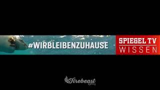 SPIEGELTVWissen & SPIEGEL Geschichte Webbanner (920*110)