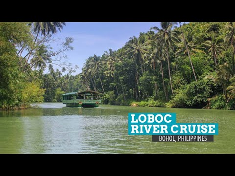 Markvard - Summer Wild - No Copyright Music Loboc Bohol River 4K