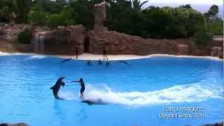 LORO PARQUE шоу дельфины 2011 год.Тенерифе, Канарские острова.