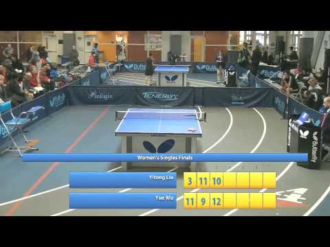 2014 Butterfly Aurora Cup - Women's Singles Finals