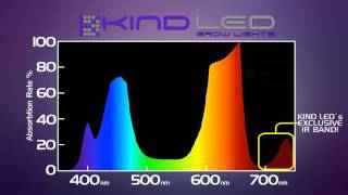 Cali Light Works vs. Kind LED | LED Grow Light Reviews