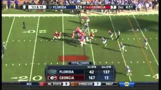2014 Florida Gators Vs. #11 Georgia Bulldogs