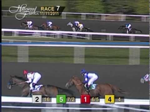 Racing Aptitude ($35.20) Surprises In Yo Eleven