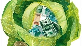 КОЛЛЕКТОР Е КАПУСТА СУПЕР ПРИКОЛ Как не платить кредит | Кузнецов | Аллиам