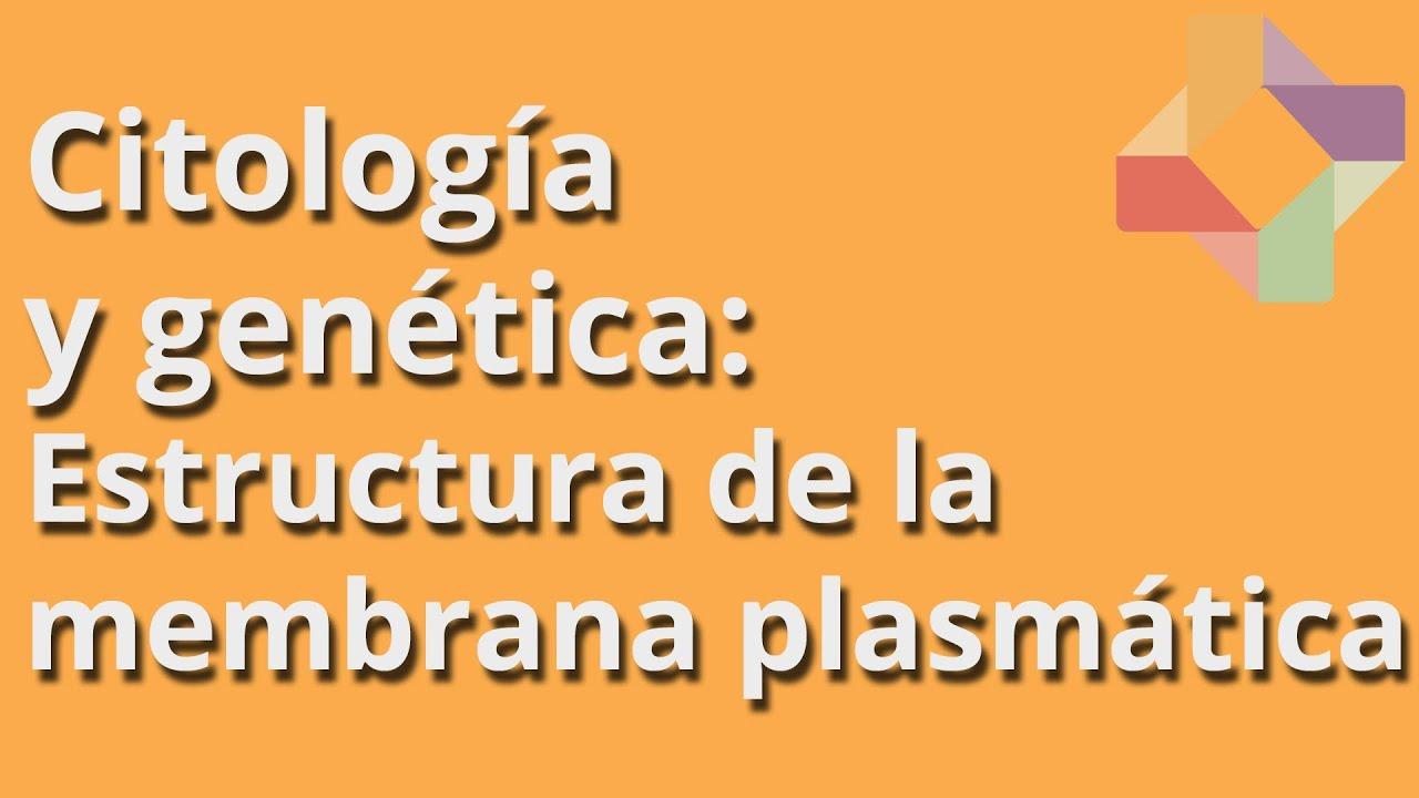 Estructura De La Membrana Plasmática Citología Y Genética Educatina