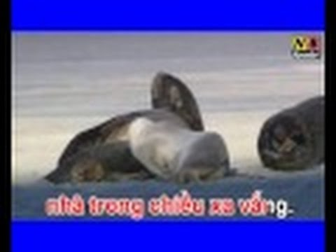 Karaoke Toc gio thoi bay NB