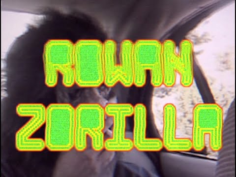 Rowan Zorilla FOOTAGE PARTY