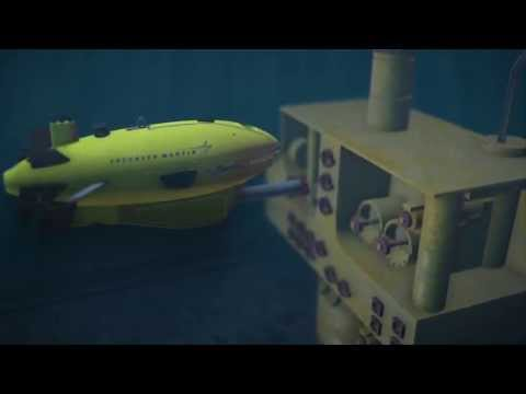Marlin Completed First Commercial Autonomous Subsea Structure Inspections