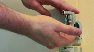 Hornbeam Ivy - Product Demo - Wall Mounted Soap Dispenser, Wd2501