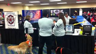 Rescue Dogs At The Greater Pittsburgh Fire Ems Expo Feb 12 & 13, 2011