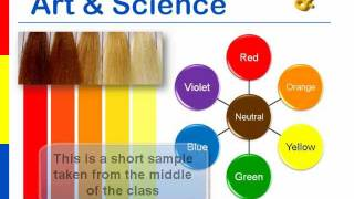 HairDirections Advanced Online HairColor CE Class: Color Geek