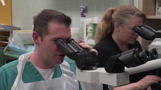 Hear From Pathologists' Assistant Students