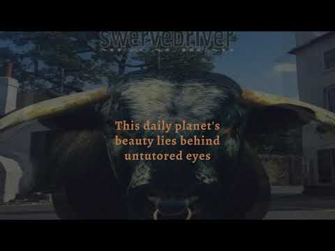 Swervedriver - Blowin' Cool (Remastered) (Lyric Video) mp3