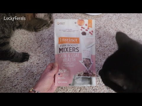 Raw Boost Mixers Skin And Coat Health Review Taste Test - Freeze Dried Raw Cat Food