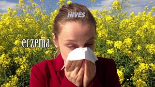 Colorado Allergy & Asthma Center's overview of Allergy Shots.