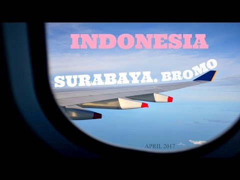 Surabaya/Mt Bromo, Indonesia | Travel Vlog Part 1 (Day 1)