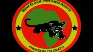 [BPNC] BLACK POWER NEWS CAST CHECK OUT WEEK 2 NEWS CAP!