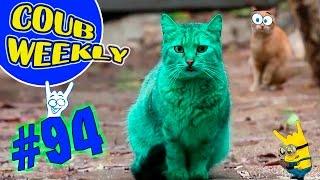 Coub Weekly # 94 Лучшие коубы недели. (Подборка COUB приколов 2016)