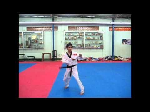 Gee dance Taekwondo VN