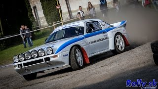 Rally Sprint Šaca 2014