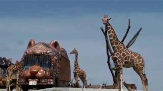 【九州旅遊】九州自然野生動物園近距離的餵食動物