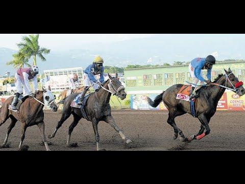 Orpheus (JAM) - Jamaica Derby 2016