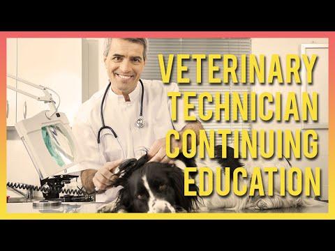 veterinary-technician-continuing-education