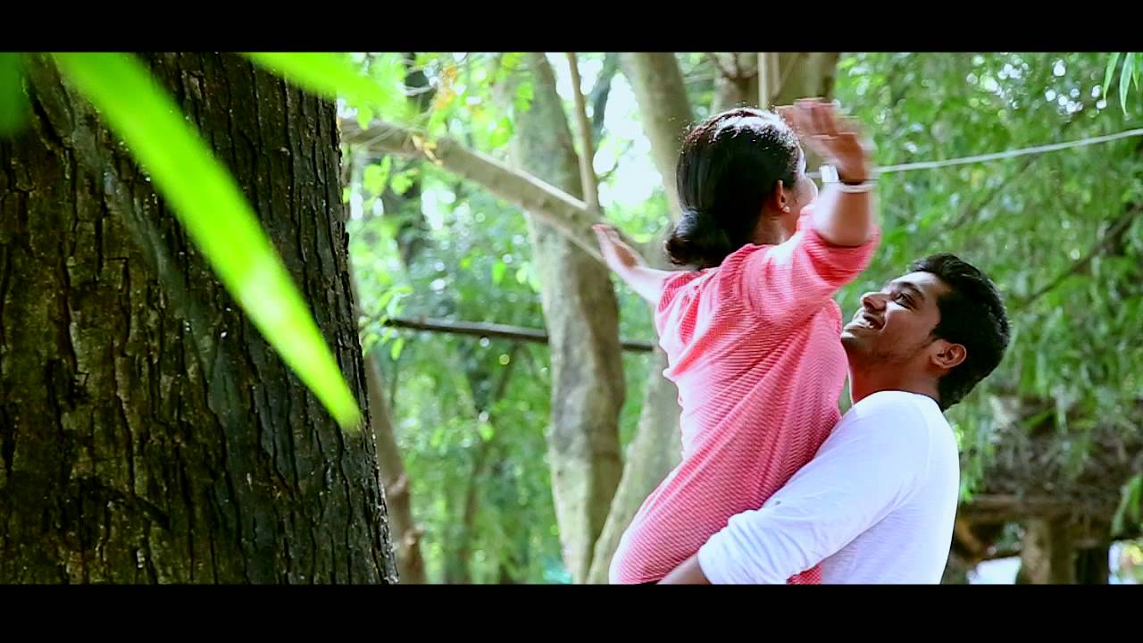 Kerala Wedding Video