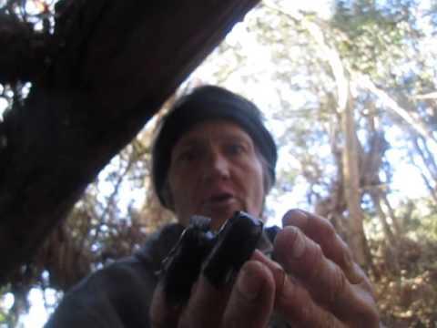 1/27/16 Neural Enmslavement Human Traffciking and GangStalking Remote Neural Monitoring used