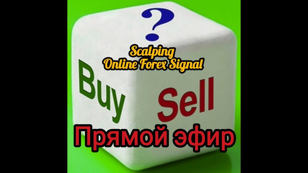 trader signal online