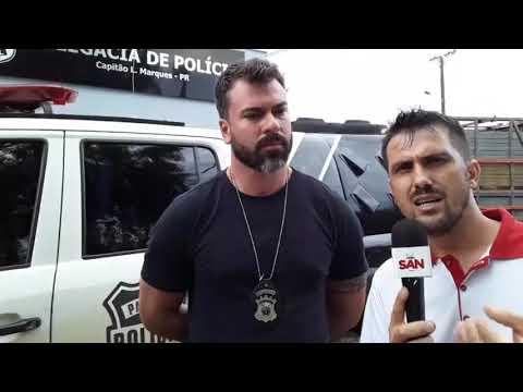 Polícia Civil de Capitão recuperou 21 cabeças de gado furtados de propriedade em Santa Lùcia