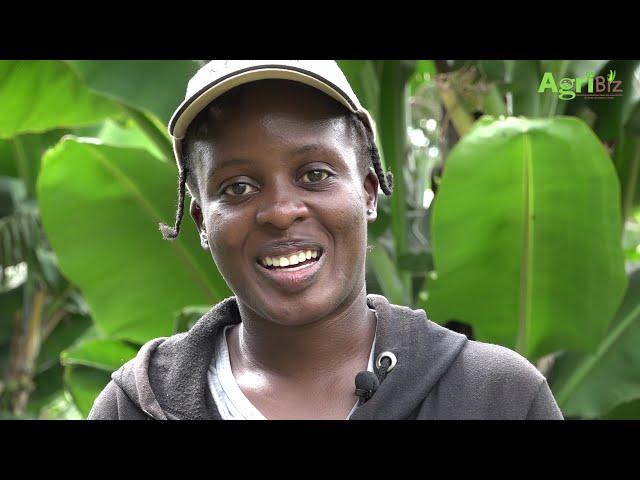 AgriBiz: How Viakwetu a company based in Bungoma is spicing up organic farming.