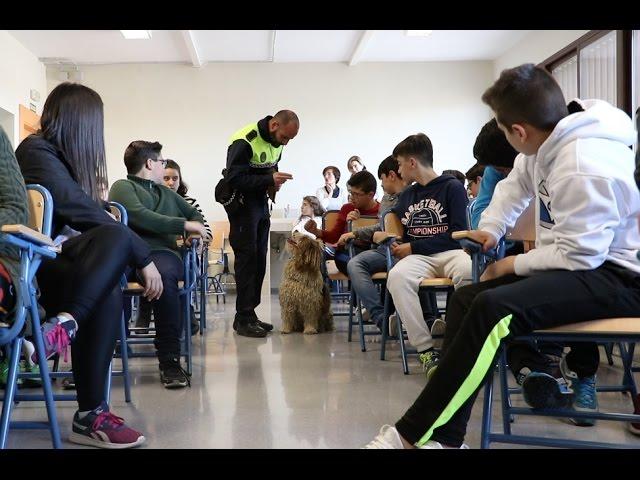 VÍDEO: Kofi, la perrita de la Unidad Canina, estrella de las sesiones informativas de la Policía Local en centros educativos