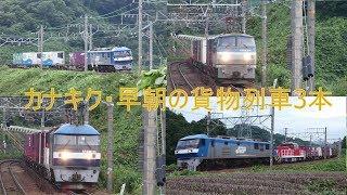2019/07/07 JR貨物 早朝のカナキク大カーブから貨物列車3本 5091レにムドHD300-33
