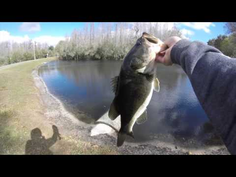 Winter time bass fishing youtube for Best time for bass fishing