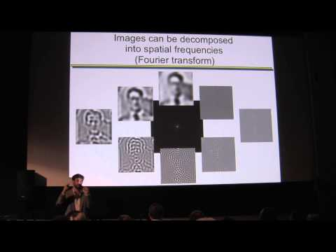 """FMRI: Neo-Phrenology or """"Window into the Movies in Our Mind""""?"""