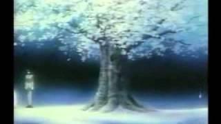 AMV - Tokyo Babylon - Wonderchild.avi
