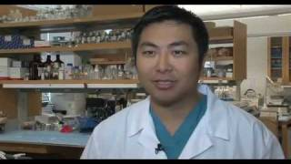 Brain Cancer Research - Glioblastoma and Glioma | UCLA Neurosurgery