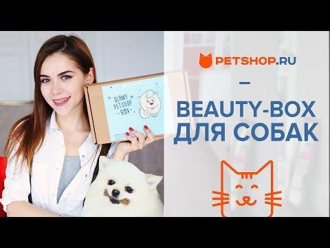 ОБЗОР КОРОБОЧКИ ♥ PETSHOP BOX GLAMY ♥