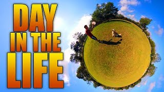 DAY IN THE LIFE OF A DOG (360° Video)