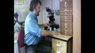 Radiolarian Micropalaeontology: Extracting Radiolaria from Sediment