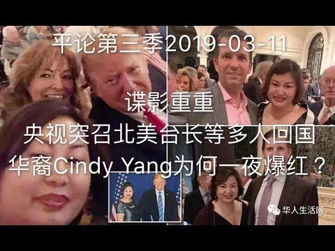 平论Live |  谍影重重 央视突召北美台长等多人回国 华裔Cindy Yang为何一夜爆红 2019-03-11