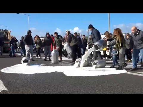 شاهد: مزارعون يسكبون  الحليب في الشارع احتجاجا على ثمنه  - 05:53-2019 / 2 / 12