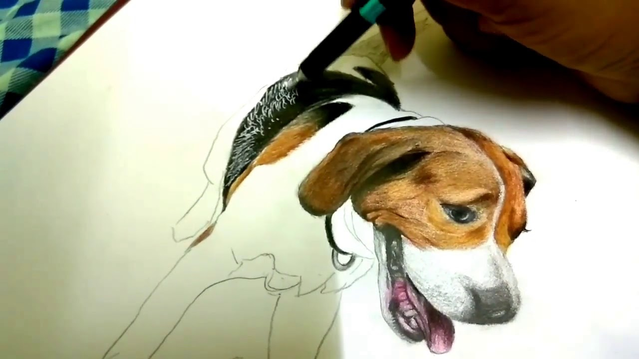How To Draw Dog Beagle Drawing Animals