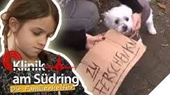 Hund zu verschenken! Wieso will Franzi (8) ihr Haustier nicht mehr? | Die Familienhelfer | SAT.1